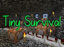 Tiny-Survival-Map-Thumbnail
