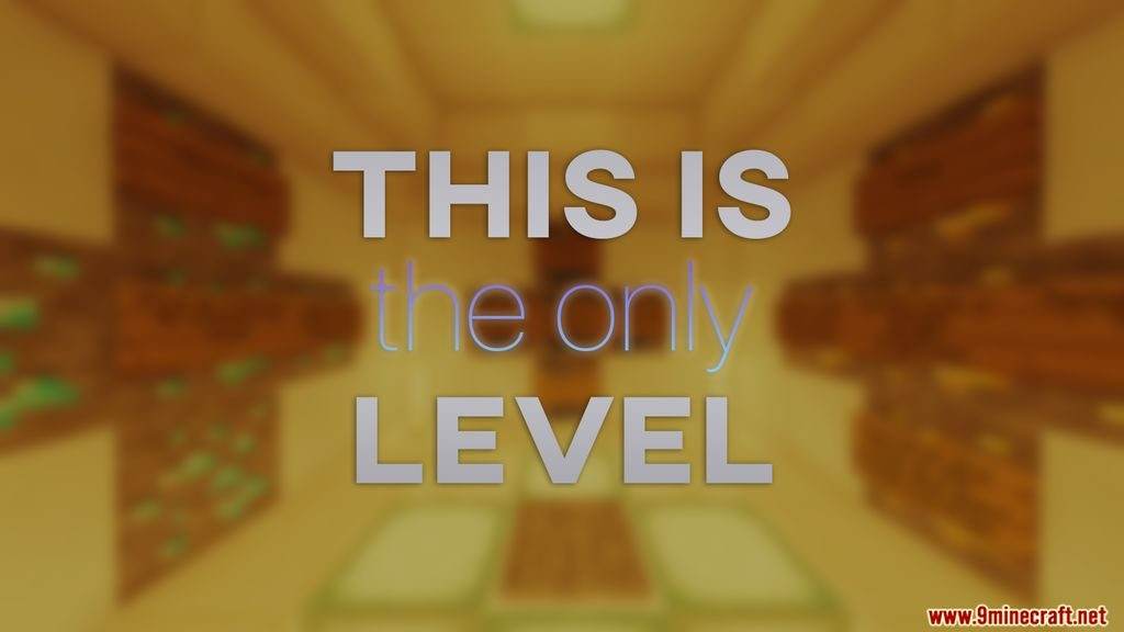 This Is The Only Level Map 1.14.4 Download