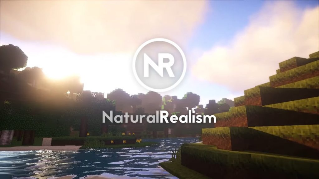 Natural Realism Resource Pack 1.14.4/1.13.2 Download